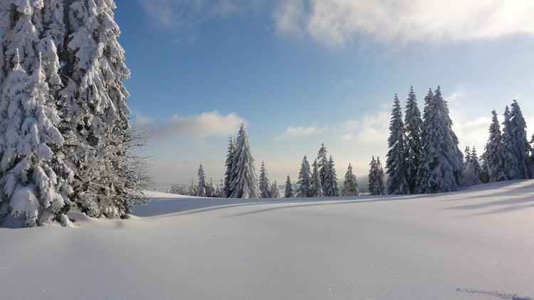 jeudi 2 aout Paysage-d-hiver-1086121247-1656047