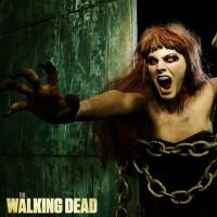 Ganadores Calendario Zombie The Walking Dead 475