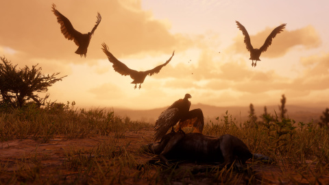 Red Dead Redemption II : Un aperçu de la vie sauvage en images 1537948138-9494-capture-d-ecran