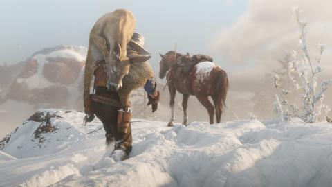 Red Dead Redemption II : Un aperçu de la vie sauvage en images 1537948179-346-capture-d-ecran
