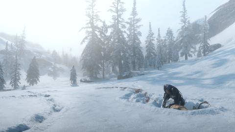 Red Dead Redemption II : Un aperçu de la vie sauvage en images 1537948181-5256-capture-d-ecran