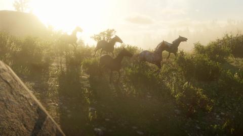 Red Dead Redemption II : Un aperçu de la vie sauvage en images 1538208008-3582-capture-d-ecran