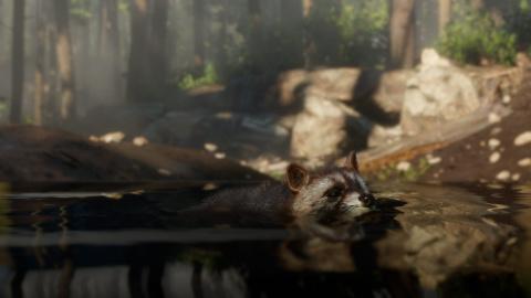 Red Dead Redemption II : Un aperçu de la vie sauvage en images 1538208009-25-capture-d-ecran