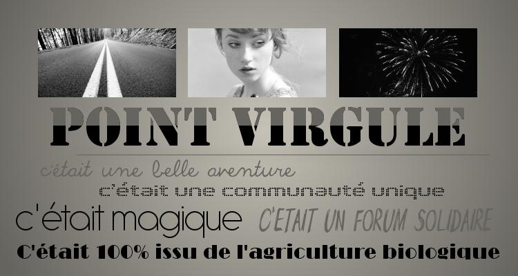 POINT Virgule.