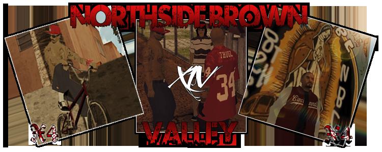 NorthSide Brown Valley XIV