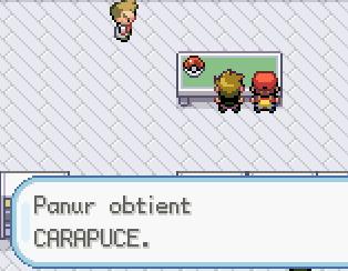 Mon périple sur Pokémon Rouge Feu 73f8f82bc0d542b3b8493b82ef5e0af1