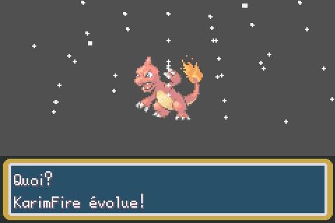Mon périple sur Pokémon Rouge Feu E84c6aed337f45559039a69ef36f0aa0