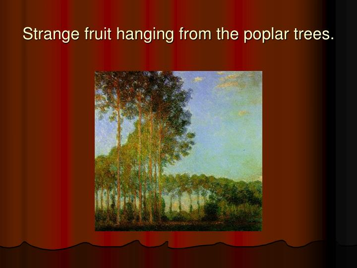 Historical Symbols Of Freedom Strange-fruit-hanging-from-the-poplar-trees-n