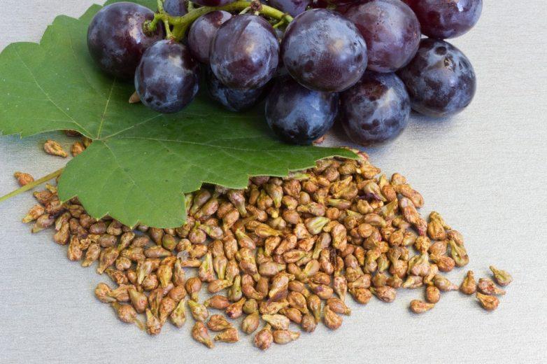 Польза виноградной косточки! Рецепты 214ca53de3