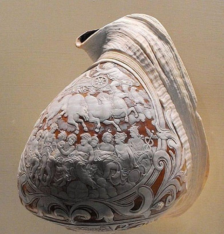 Глиптика по раковинам молюсков 172b22eb9a