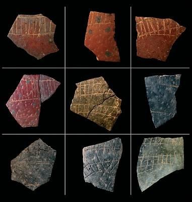 """¿""""Escritura""""... hace más de 50.000 años? 1267474399897huevos%20avestruzdn"""