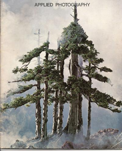 Los fantasmas del bosque Bwy1256955516v