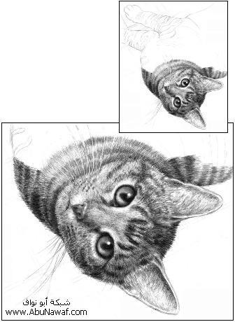 كيف  ترسم قطه  11ssssw