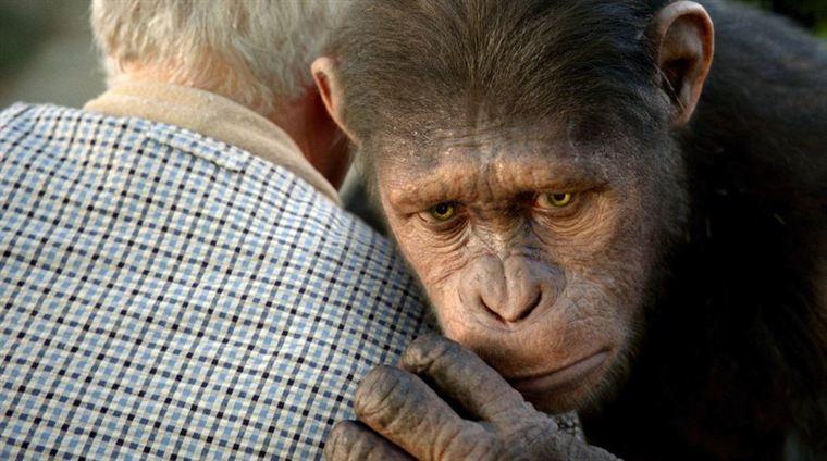 La Planète des singes : les origines 19765985