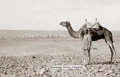 صور رائعة عن اريحا الفلسطينية  5