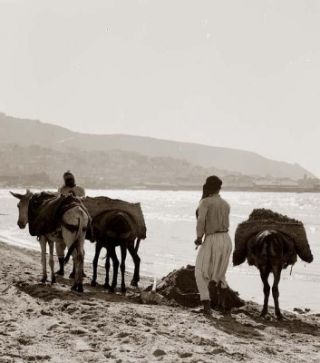 موسوعة الصور لفلسطين الحبيبة 4
