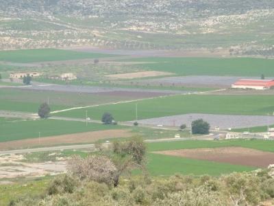 مناظر طبيعية من بلدة عرابة : طريق نابلس 25755915810