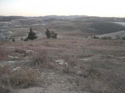 مناظر طبيعية من بلدة عرابة : طريق نابلس 2575591589