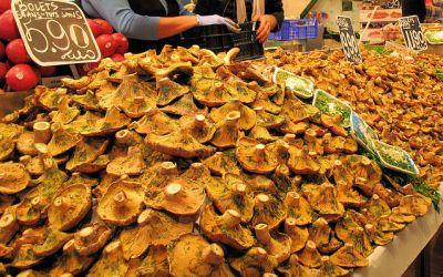 سحر  الالوان  في سوق  بوكيريا  البرشلوني 39013866324