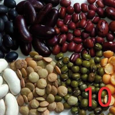 10 أطعمة يمكن استهلاكها لتحسين معدل الذكاء  3909759917
