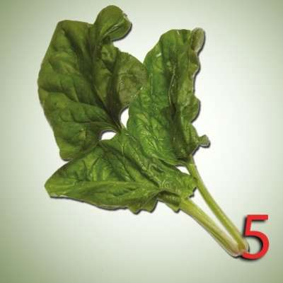 10 أطعمة يمكن استهلاكها لتحسين معدل الذكاء  3909759922