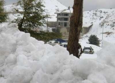 صور ومناظر طبيعية من لبنان 3909772535