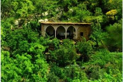 صور ومناظر طبيعية من لبنان 3909772558