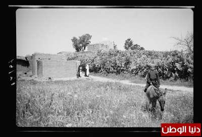 مكتبة نكبة فلسطين - صفحة 2 3909775464