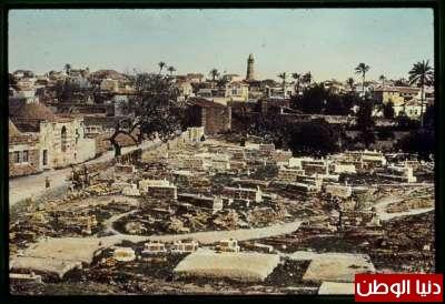 مكتبة نكبة فلسطين - صفحة 2 3909775468