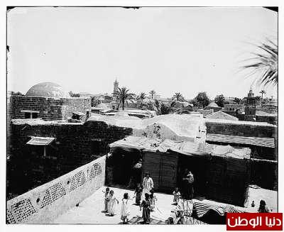 مكتبة نكبة فلسطين - صفحة 2 3909775480