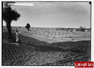 مكتبة نكبة فلسطين - صفحة 2 3909775481