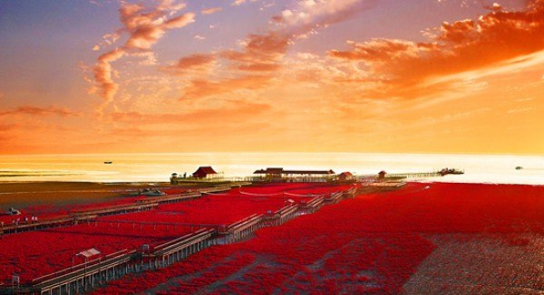 شاطىء الأحمر فى الصين  3909979998