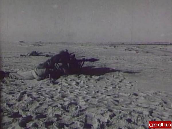 صورحية من حرب اكتوبر73 3910000778