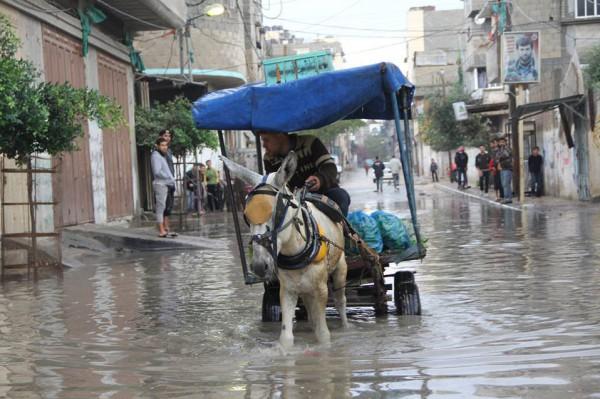 الامطار تغرق البلاد 5-12-2013 3910049340