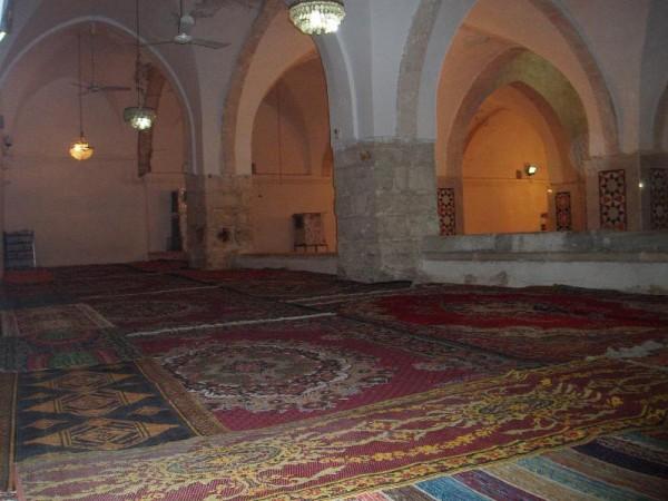 جولة في الحرم الابراهيمي 3910093121