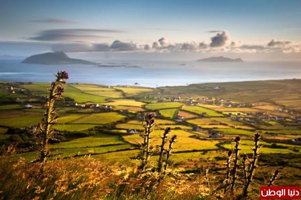 طبيعة ايرلندا -بدون مكياج 3910156722