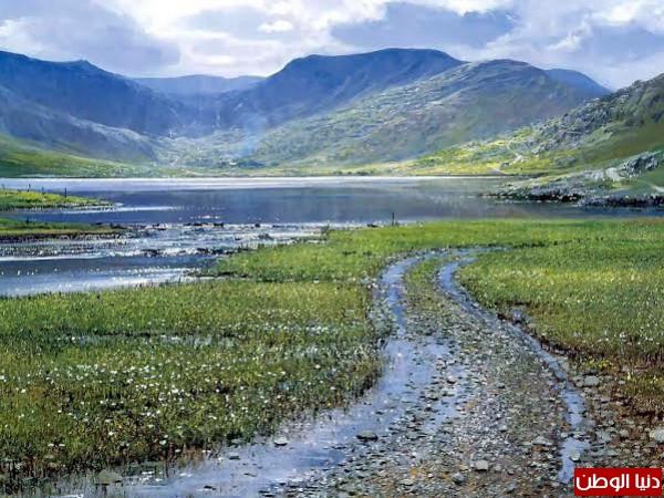 طبيعة ايرلندا -بدون مكياج 3910156723