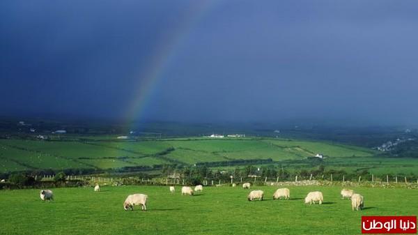 طبيعة ايرلندا -بدون مكياج 3910156730