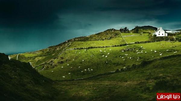 طبيعة ايرلندا -بدون مكياج 3910156731