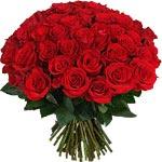 Dictons sur le mois de mars Roses_rouges0949_150