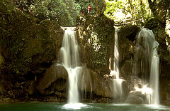 Best of Bohol Attractions 455078610_b9a10894eb_m