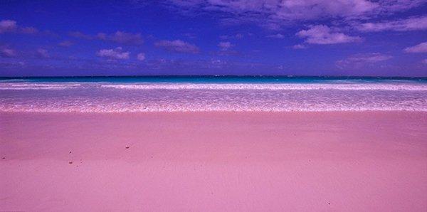 هل تعلم ما هو سر الشاطئ القرنفلي في جزر البهاما؟ 2037851561
