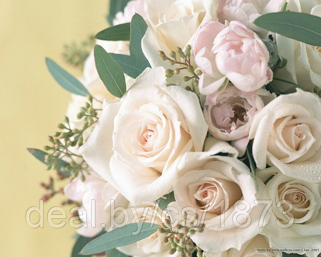Наши праздники - Страница 22 7751633_w640_h640_wallcooweddingfloweren019