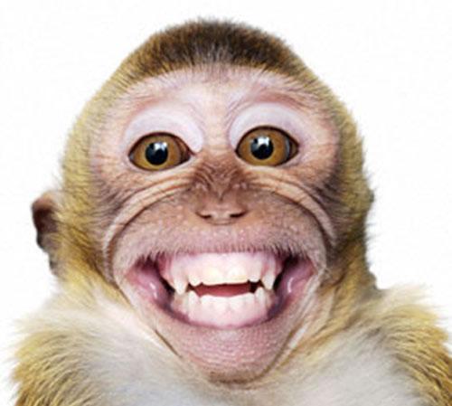 ابتسم من فضلك! 001143210a6b0fd1695914