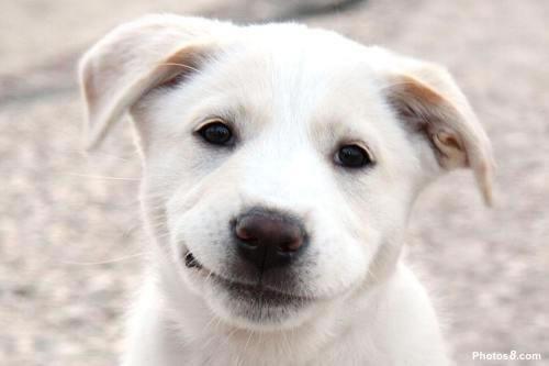 ابتسم من فضلك! 001143210a6b0fd1695916