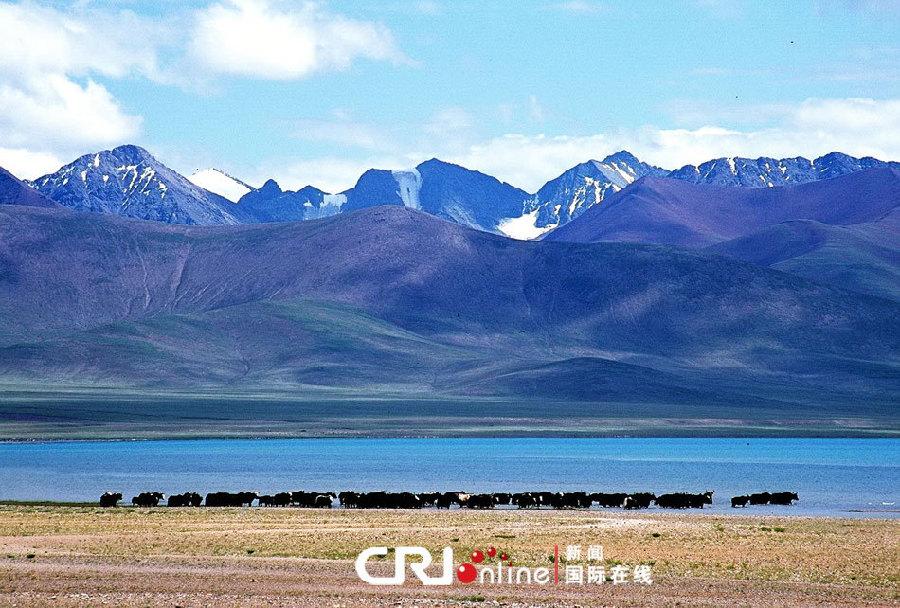 Bouddha Bar/Images du jour: La grandeur des montagnes tibétaines 001ec94a27150fa4542c43