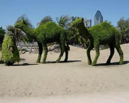 Esculturas con el cesped. 0011432109d20bc4fe5a46