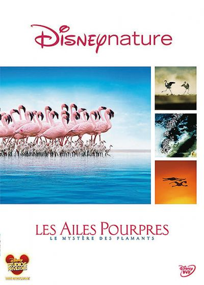 [BD + DVD] Les Ailes Pourpres, le mystère des flamants (4 Juin 2010) 47267