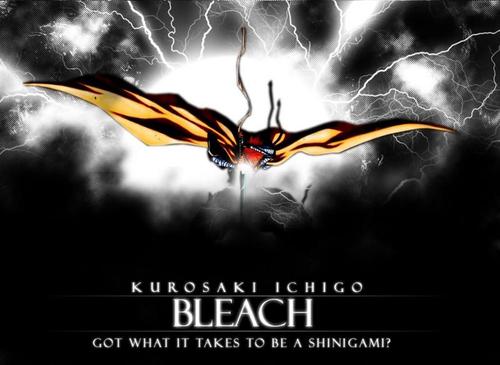 $&^&$^(موسوعه صور بليتش)%$#&* Bleach-bleach-anime-40011_500_365