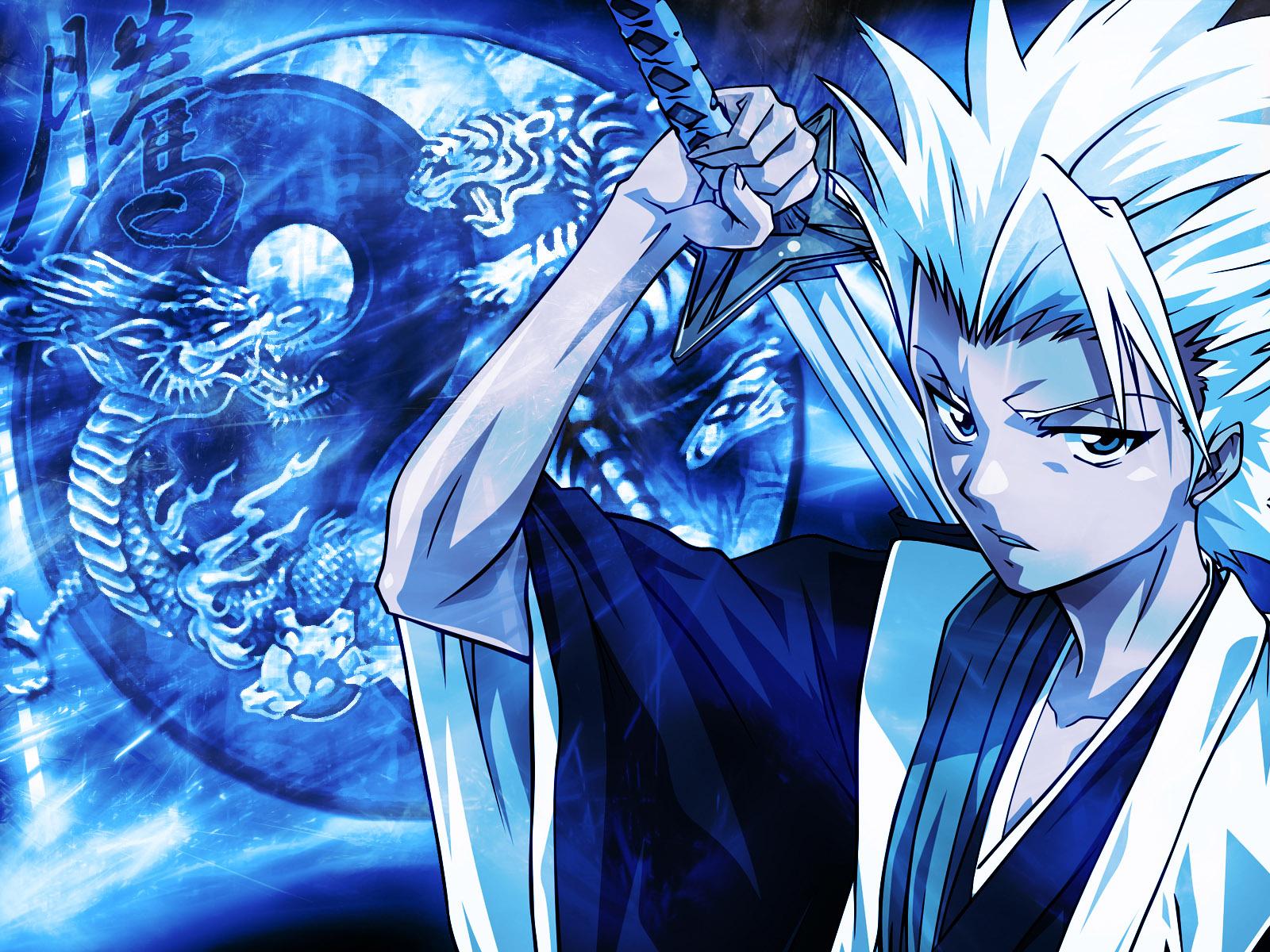 Veja uma ficha de personagem Hitsugaya-Toushiro-bleach-anime-40007_1600_1200